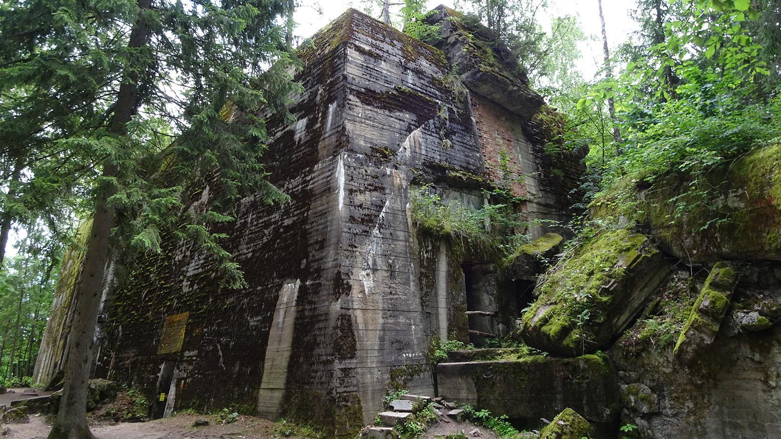 Abenteuerliche Ruinen in Polens Wäldern